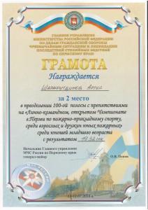 Шарафутдинов А.